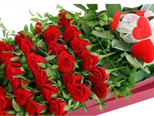 _милион роз (600x452, 136Kb)
