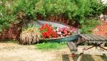 ������ garden-boat-03 (608x349, 198Kb)