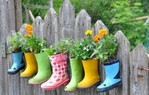 ������ rainboot-garden-on-a-fence (500x319, 62Kb)