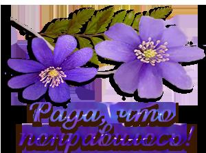 http://img0.liveinternet.ru/images/attach/c/5/86/457/86457716_0c2105dead1a.png