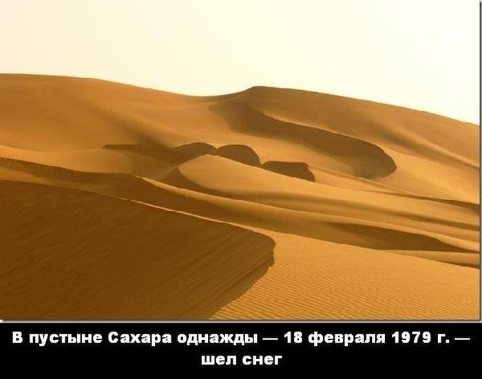 interesnye_fakty_43_foto_16 (700x551, 40Kb)
