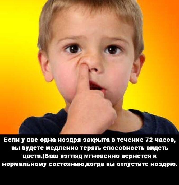 interesnye_fakty_43_foto_34 (677x700, 61Kb)