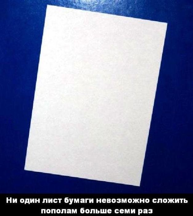 fakt_19 (627x700, 36Kb)