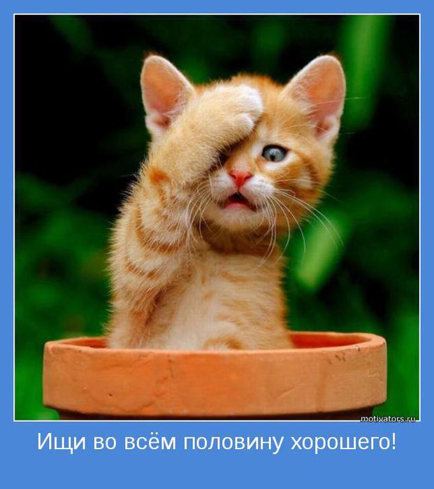 позитивное мышоение/1335459325_pozitiv_motivator (621x700, 44Kb)