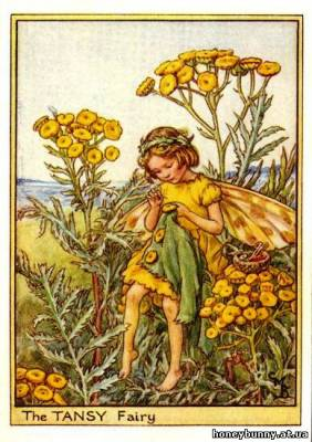 Вышивки крестом феи цветов