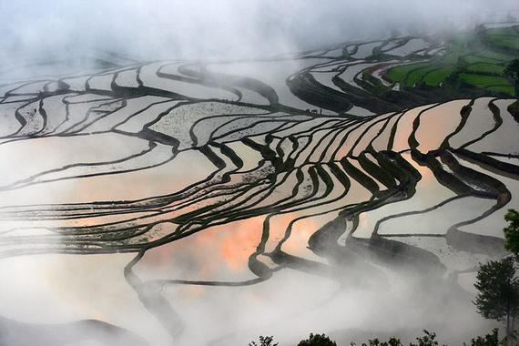 рисовые террасы23 (570x380, 106Kb)