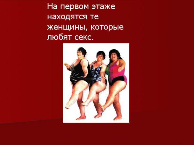 1328164521_shop_14 (650x488, 26Kb)