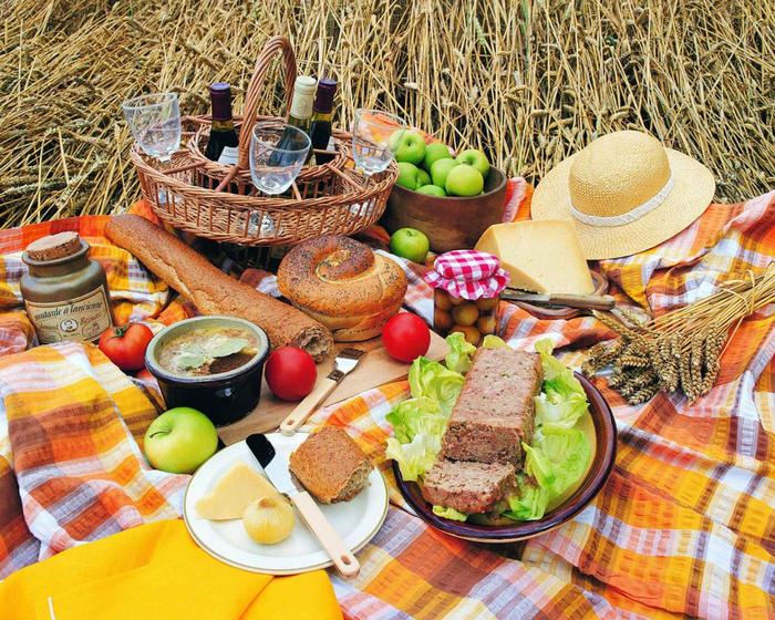 piknik-s-semiey (700x560, 673Kb)