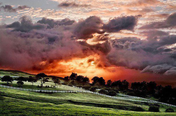 Небо и ничего более, местность Кеокеа, Гавайи (604x399, 59Kb)