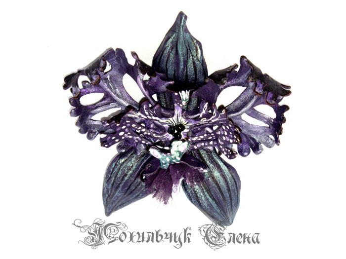 орхидея (700x525, 114Kb)