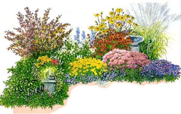 1. Синий цветник с розами, флоксами, колокольчиками и котовником .Время цветения июнь—июль, солнечное местоположение.