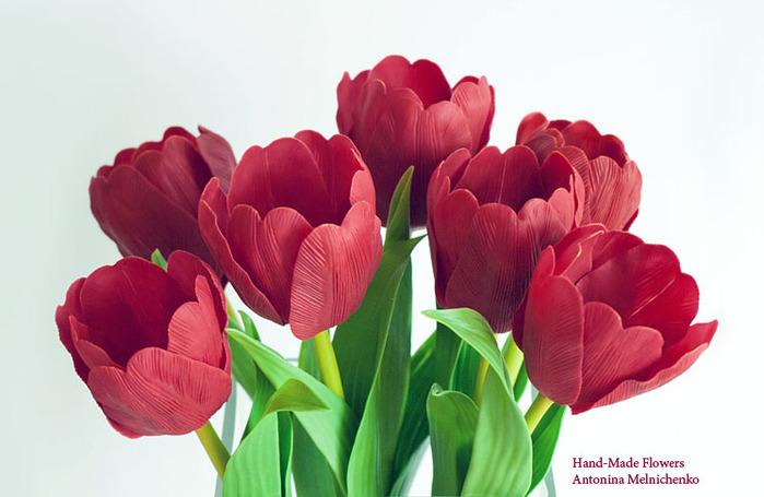 Тюльпаны из холодного фарфора/1933157_Clay19 (700x455, 88Kb)