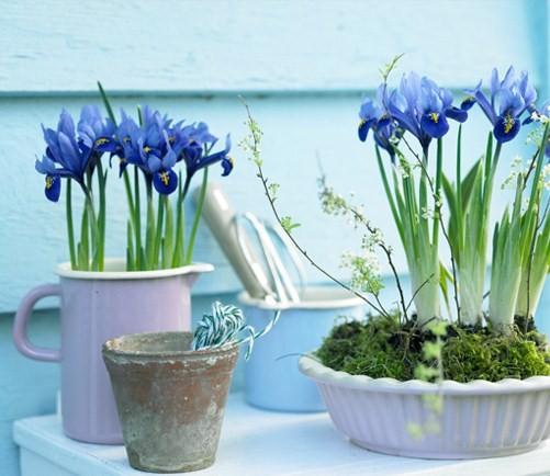 dekor-interiera-vesennie-cvety (501x434, 68Kb)