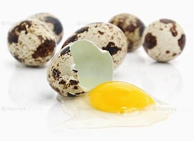 перепелиные яйца (380x276, 28Kb)