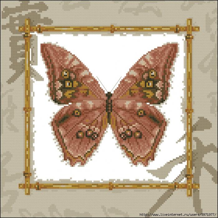 3971977_Butterflies_025 (700x700, 479Kb)