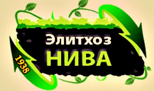 cb9e54b5708e (500x297, 183Kb)