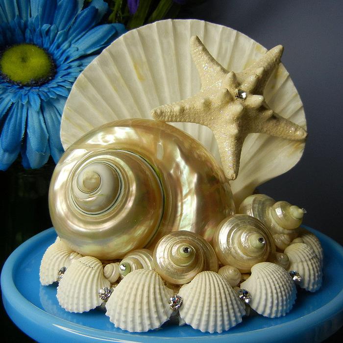 Изделия из ракушек своими руками для детей
