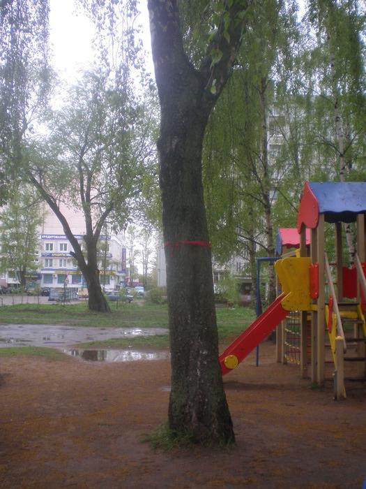 Изображение 010 (525x700, 143Kb)