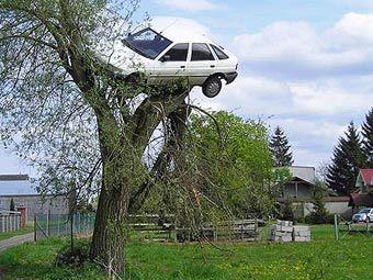 Автомашина на дереве (340x255, 31Kb)