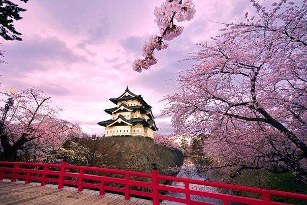 Замок Хиросаки, Япония (604x403, 75Kb)
