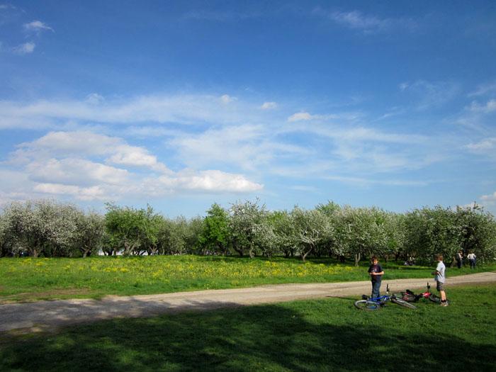 Коломенское Сады 18 (700x525, 106Kb)