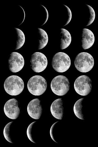 Moon_phases_small (315x473, 13Kb)