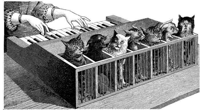 кошки в истории/1336666001_faktuy_o_koshkah_koshachiy_klavesin (700x387, 84Kb)