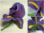 Превью crocheted_silk_iris_6 (700x525, 188Kb)