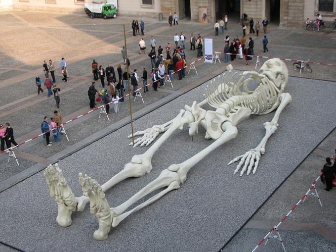 28-метровая скульптура человеческого скелета - Записки медика