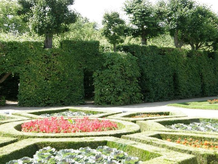 Замок Добриш - королевское имение 59917