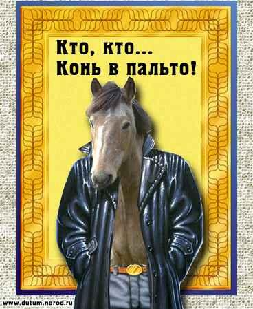 horse (368x449, 27Kb)