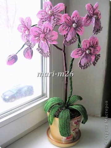 Теперь собираем нашу орхидею.  К толстой проволоке приматываем бутоны, затем цветы.  Всё обматываем флорлентой.