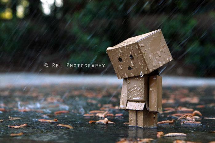 Tears-Hidden-i-nthe-Rain (700x466, 72Kb)