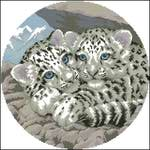 Превью Dimensions00345-Snow Lepard Cubs Dimensionsа (384x384, 29Kb)