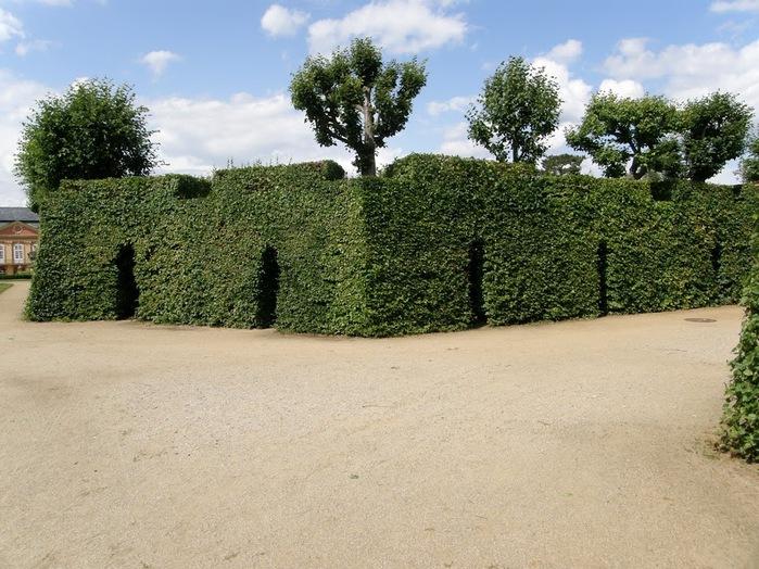 Замок Добриш - королевское имение 55880