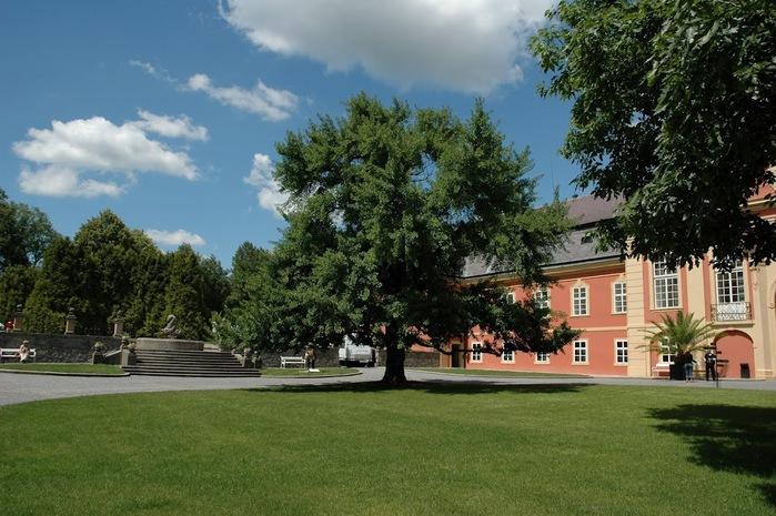 Замок Добриш - королевское имение 99941