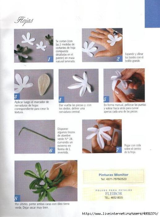 flores 02 pag 11 (517x700, 212Kb)