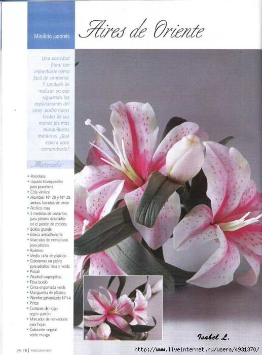 flores 02 pag 16 (517x700, 268Kb)