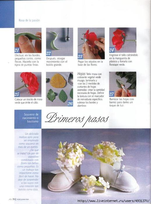 flores 02 pag 26 (518x700, 248Kb)