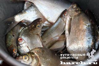 рыба1 (320x214, 49Kb)