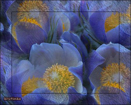 синие-цветы (450x362, 349Kb)