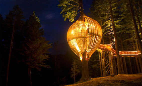 Redwoods Treehouse (570x346, 75Kb)