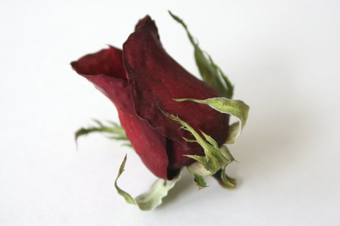 drying_roses_with_silica_gel_09 (700x466, 25Kb)