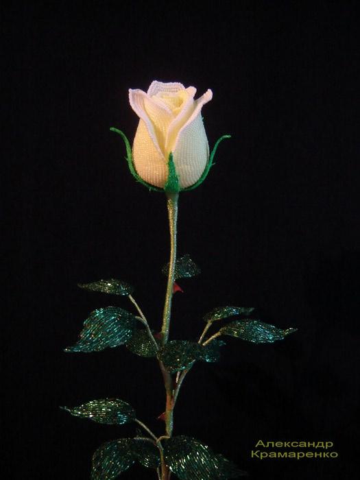 Самые красивые розы из бисера, которые я когда-либо видела, принадлежат Александру Крамаренко, инженеру из Рязани.