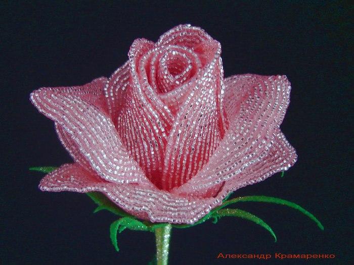 Плетение бисером роза. .  Смотреть цветы из бисера фото Все о рукоделии: схемы, мастер классы, идеи на сайте...