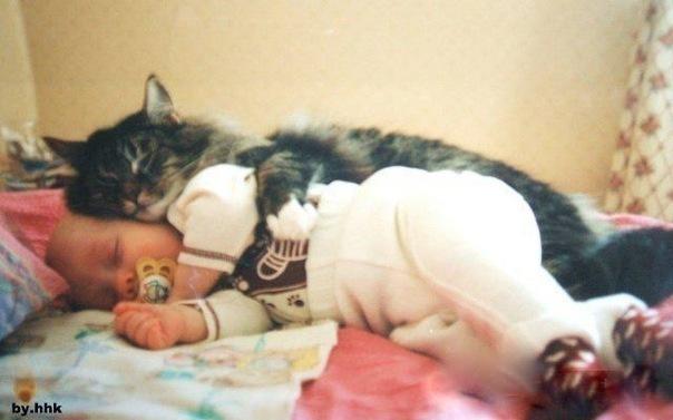 котик обнимает ребенка (604x377, 53Kb)