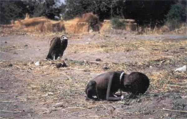 child_vulture (600x384, 45Kb)