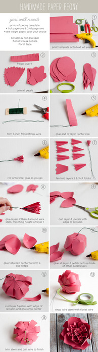 PaperPeonyInstructions (494x900, 58Kb)