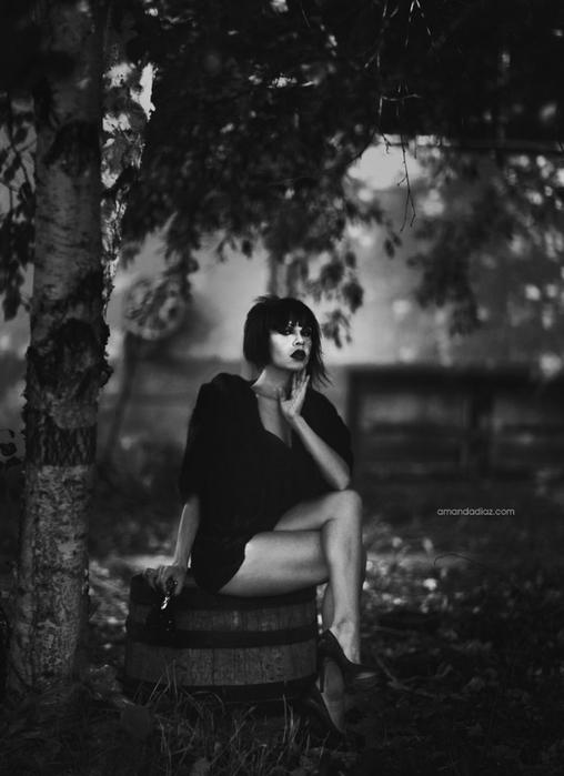 Романтичные fashion photo от Amanda Diaz 12 (508x700, 164Kb)