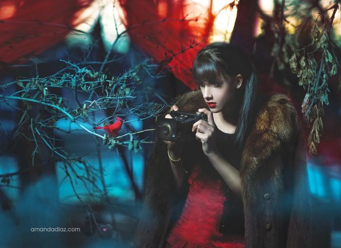 Романтичные fashion photo от Amanda Diaz 18 (700x509, 80Kb)